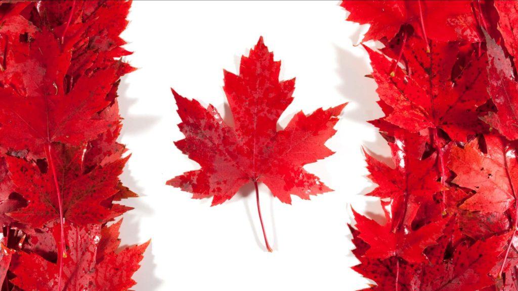 Государственная стипендия в Канаде